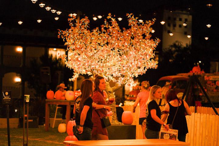 Pumpkin Fest at the Princess (Sept. 16 - Oct. 31)